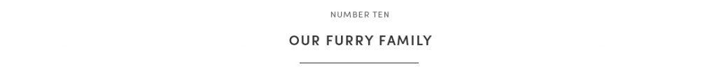 furry fam